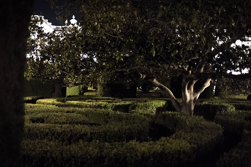 Noche en los jardines del palacio de Oriente II